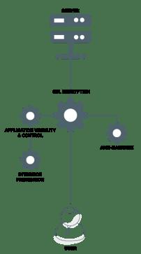 SSL-Decryption-Graphic